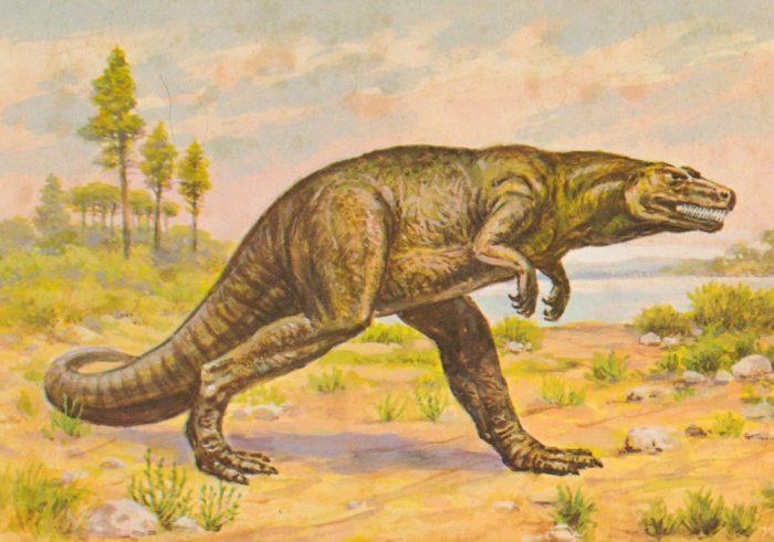 Megalosaurus-postcard