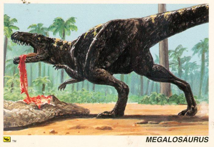 Megalosaurus trading card