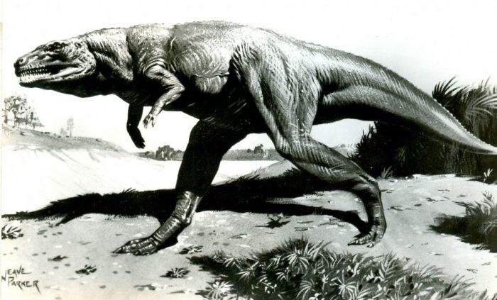 Parker-Megalosaurus