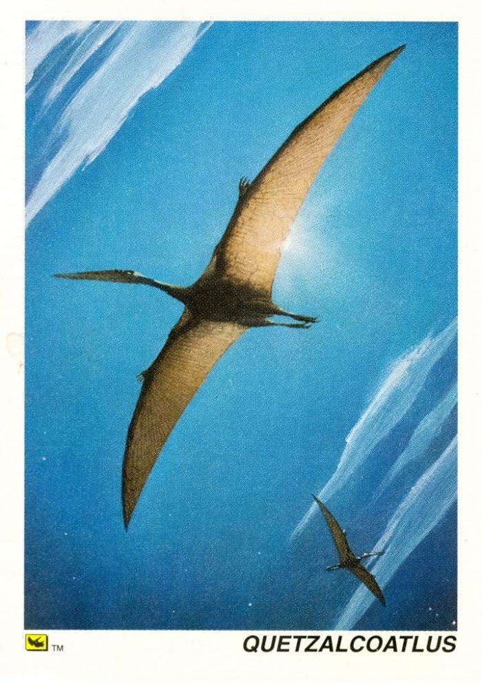 Quetzalcoatlus card