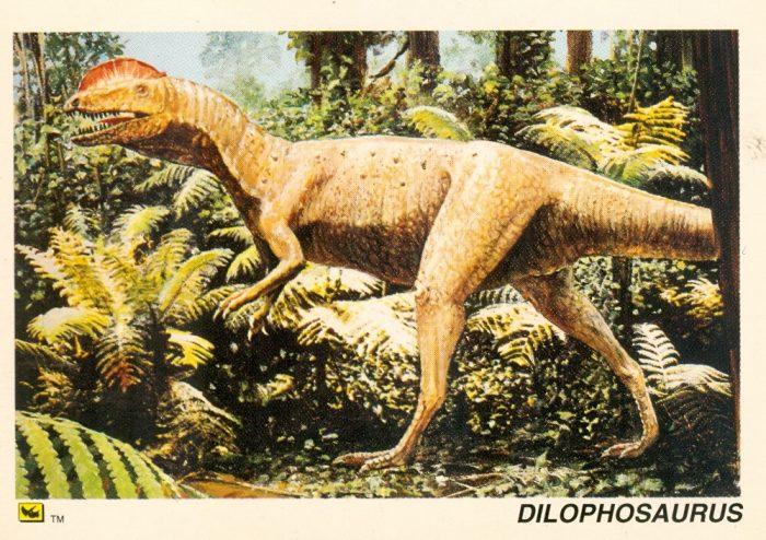 Dilophosaurus trading card