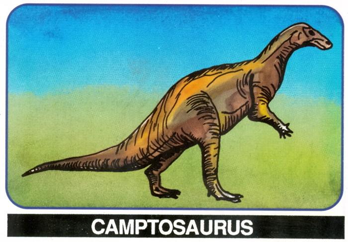 Camptosaurus Salerno card