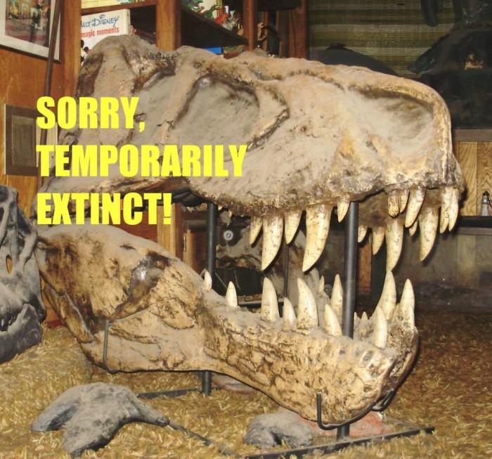 T.-rex-skull99-1000x933