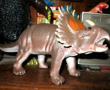 Creatology ceratopsian